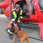 Hundetraining mit Hubschrauber